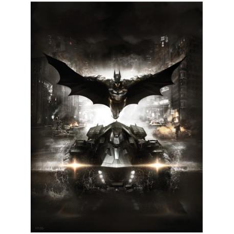 Batman Arkham / H135