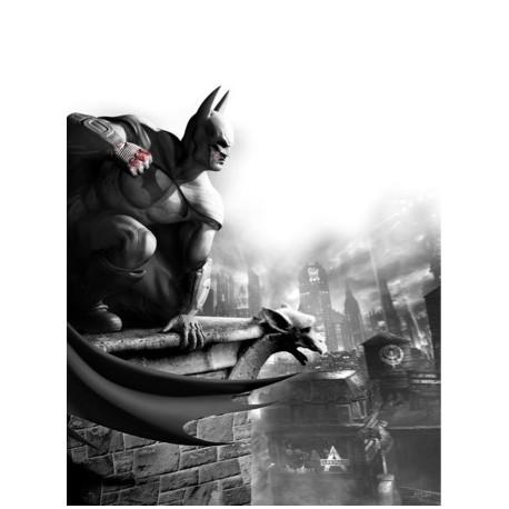 Batman Arkham / H137