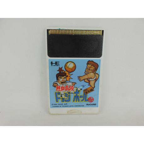 Nekketsu Koukou Dodge Ball-Bu: PC Bangai-hen